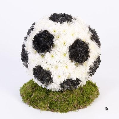 Football Tribute *