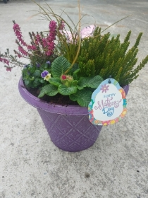 Spring Time Mother's Day Round Planter